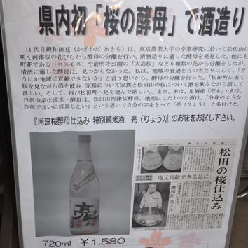 matumi_3.jpg